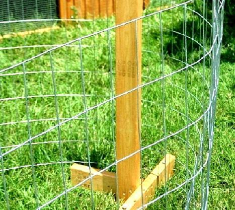 chicken fencing sale near Dallas east Texas