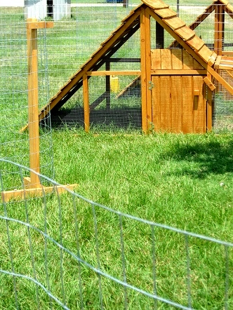 portable chicken yard fence posts